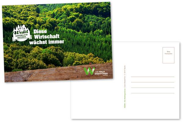 Wald natürlich nutzen: Diese Wirtschaft wächst immer